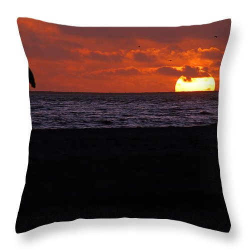 Clay Throw Pillow featuring the photograph Walking The Dog by Clayton Bruster