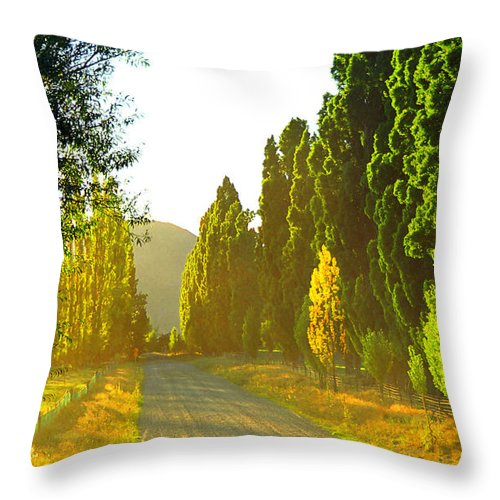 Wanaka Throw Pillow featuring the photograph Wanaka Morning Light by Kevin Smith