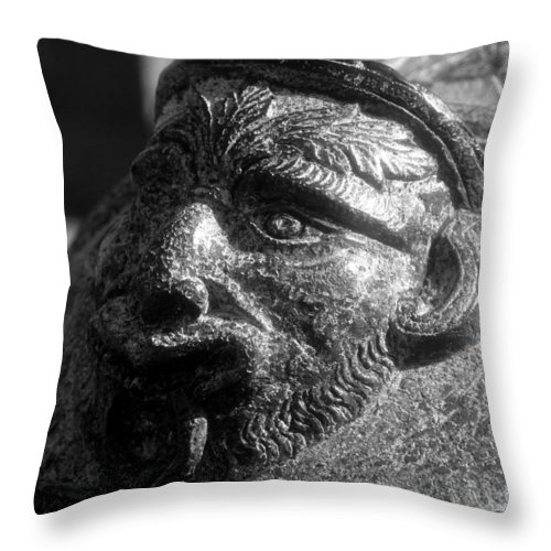 Cannon Throw Pillow featuring the photograph War Face by David Lee Thompson
