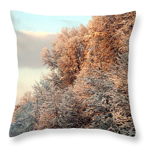 Clay Throw Pillow featuring the photograph Warm Light Snow by Clayton Bruster