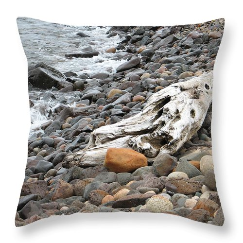 Driftwood Throw Pillow featuring the photograph Washed Up by Kelly Mezzapelle