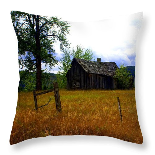 Landscape Throw Pillow featuring the photograph Washington Homestead by Marty Koch