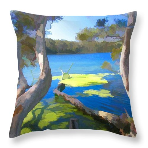 Tree Throw Pillow featuring the photograph Wat-0002 Avoca Estuary by Digital Oil