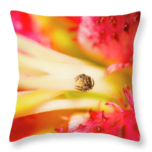 Tulip Throw Pillow featuring the photograph Watching Me by Paul W Faust - Impressions of Light
