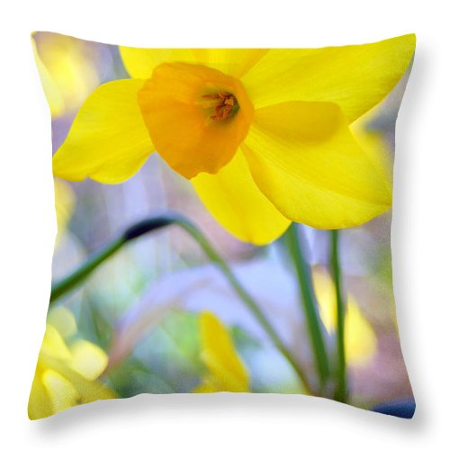 Daffodil Throw Pillow featuring the photograph Water Color Daffodil by Amy Fose