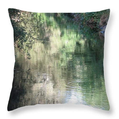 Reflection Throw Pillow featuring the photograph Water Color by Kelly Mezzapelle