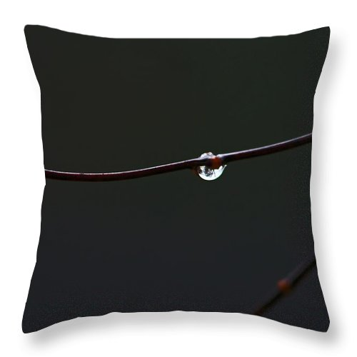 Water Throw Pillow featuring the photograph Water Drops by David Campbell
