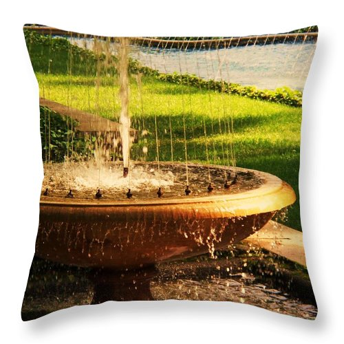 Landscape Throw Pillow featuring the photograph Water Fountain Garden by Eric Schiabor