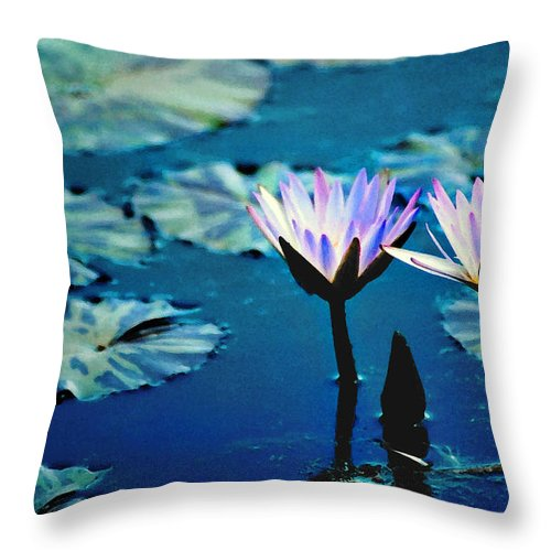 Waterscape Throw Pillow featuring the photograph Water Glow by Steve Karol