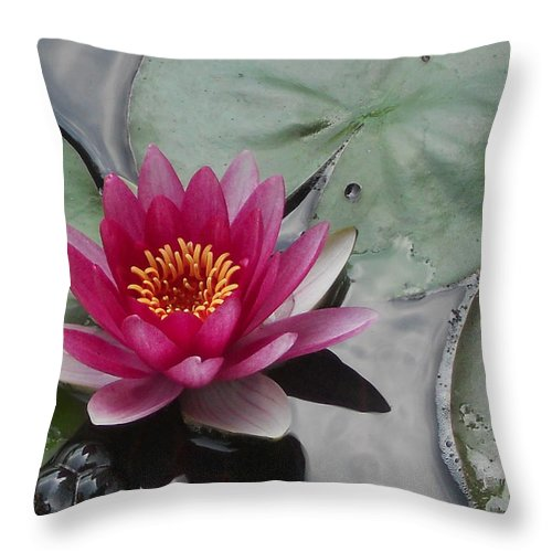 Water Lily Throw Pillow featuring the photograph Water Lily With Bubbles by Gail Schmiedlin