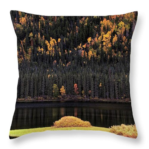 Autumn Throw Pillow featuring the digital art Water Reflections In Autumn by Mark Duffy