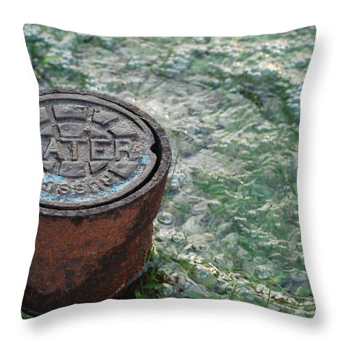 Green Throw Pillow featuring the photograph Water by Rob Hans