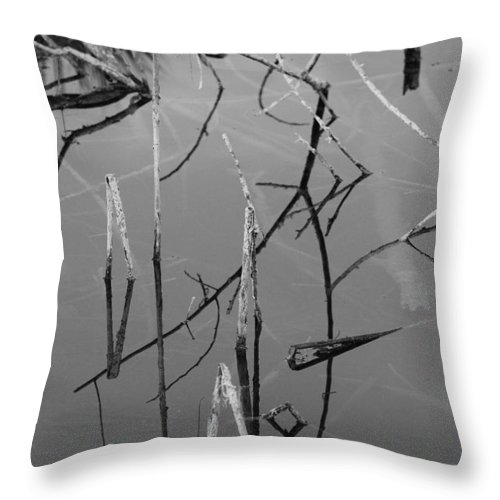 Black And White Throw Pillow featuring the photograph Water Sticks by Rob Hans
