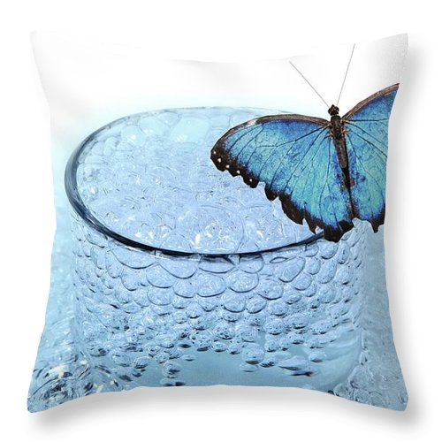 Water Throw Pillow featuring the photograph Water With Butterfly by Manfred Lutzius