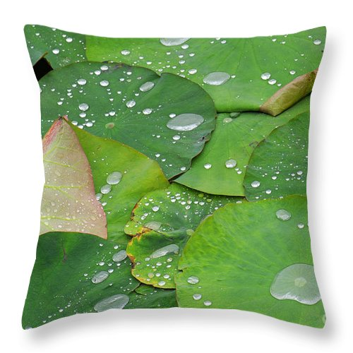 Water Lilies Throw Pillow featuring the photograph Waterdrops On Lotus Leaves by Silke Magino