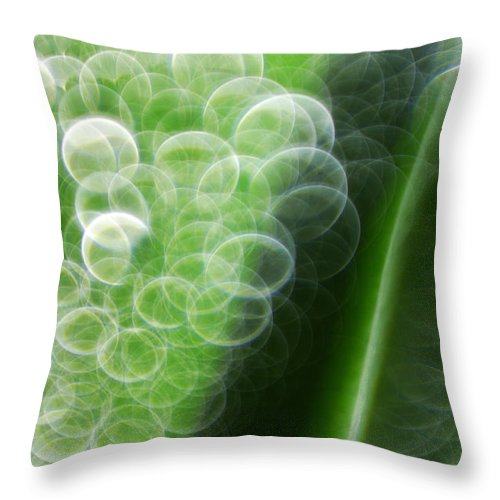 Waterdrops Throw Pillow featuring the photograph Waterdrops by Silke Magino