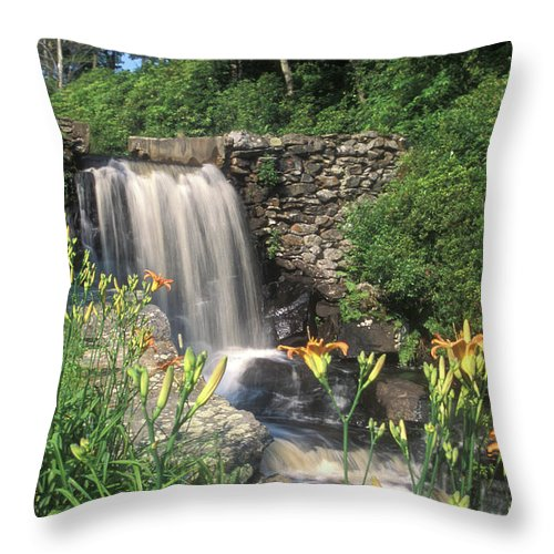 Waterfall Throw Pillow featuring the photograph Waterfall And Lilies Moore State Park by John Burk