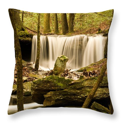 Waterfall Throw Pillow featuring the photograph Waterfall At The Ruins by Douglas Barnett