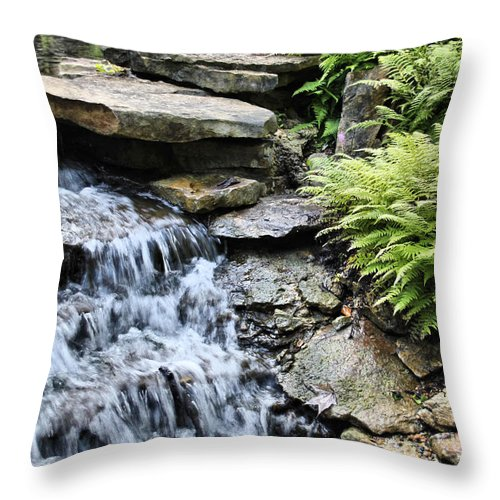 Waterfall Throw Pillow featuring the photograph Waterfall by Gary Wilson
