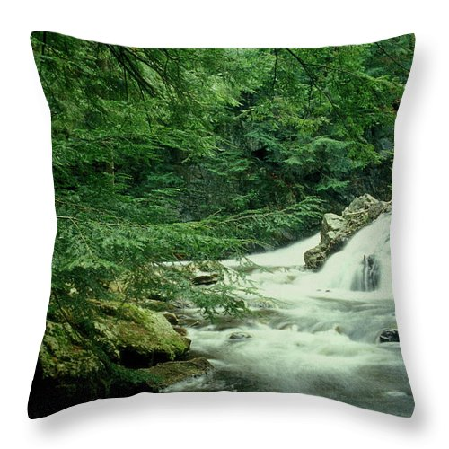 Waterfall Throw Pillow featuring the photograph Waterfall In Hemlock Forest by John Burk