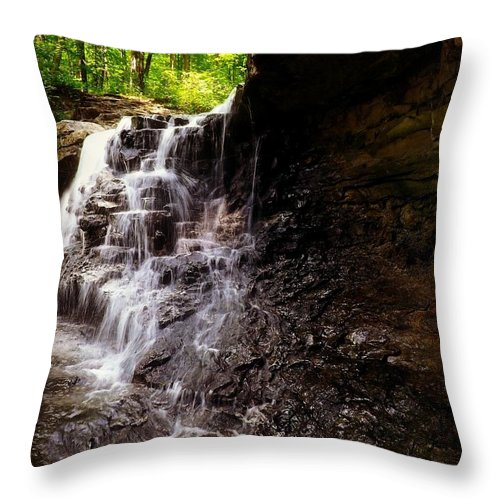 Waterfall Throw Pillow featuring the photograph waterfallScoop by Tatiana Gorbett