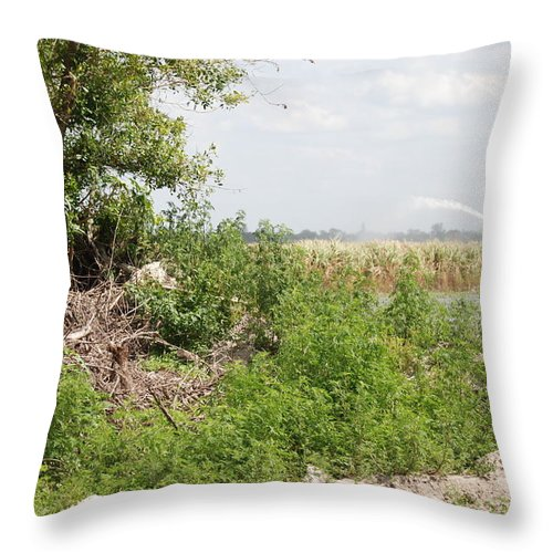 Leaves Throw Pillow featuring the photograph Watering The Weeds by Rob Hans