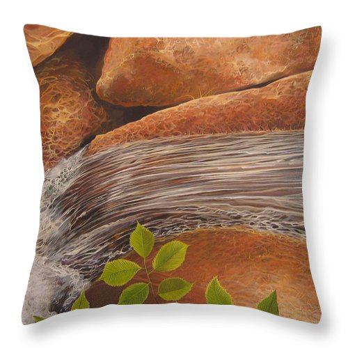 Water Throw Pillow featuring the painting Water's Edge by Hunter Jay