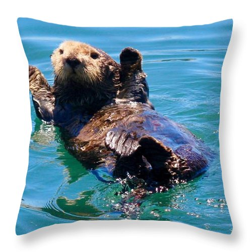 Otter Throw Pillow featuring the photograph Waving Otter by Erin Finnegan