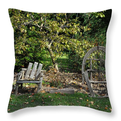 Grass Throw Pillow featuring the photograph Wayside Rest by Tim Nyberg