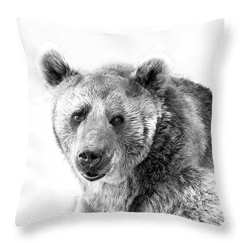 Wb Portrait Of A Bear By Irina Safonova Throw Pillow featuring the photograph Wb Portrait Of A Bear by Irina Safonova