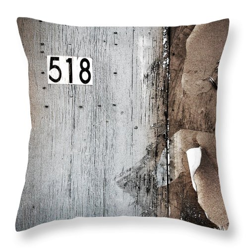 1 Throw Pillow featuring the photograph We Are Each Others Keeper by Dana DiPasquale