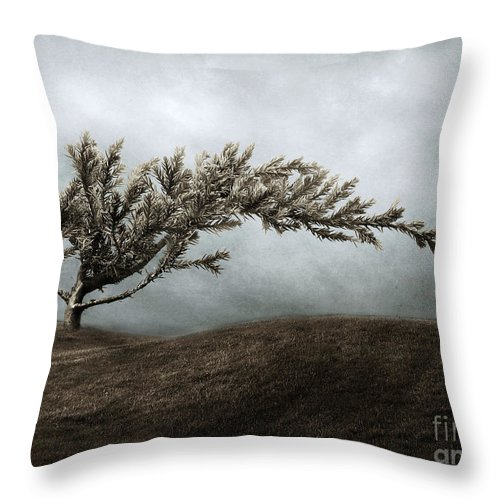 Bend Throw Pillow featuring the photograph We Break And We Bend And We Turn Ourselves Inside Out by Dana DiPasquale