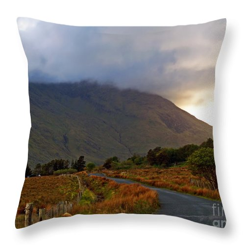Fine Art Photography Throw Pillow featuring the photograph We Took The Road Less Traveled by Patricia Griffin Brett