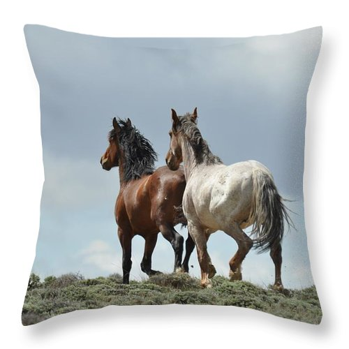 Wild Horses Throw Pillow featuring the photograph We Will Be Over the Hill in a Few Seconds by Frank Madia