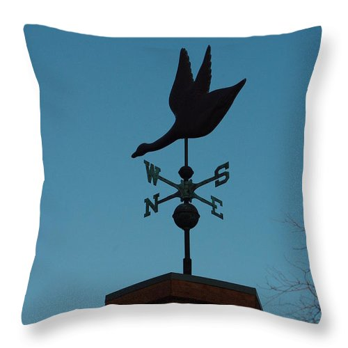 Weather Vane Throw Pillow featuring the photograph Weather Vane by Alice Markham