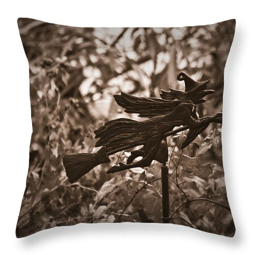 Weather Throw Pillow featuring the photograph Weather Vane by Teresa Mucha