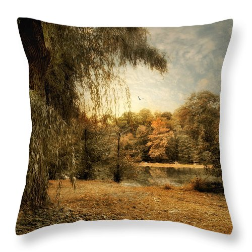 Nature Throw Pillow featuring the photograph Weeping Willow by Jessica Jenney