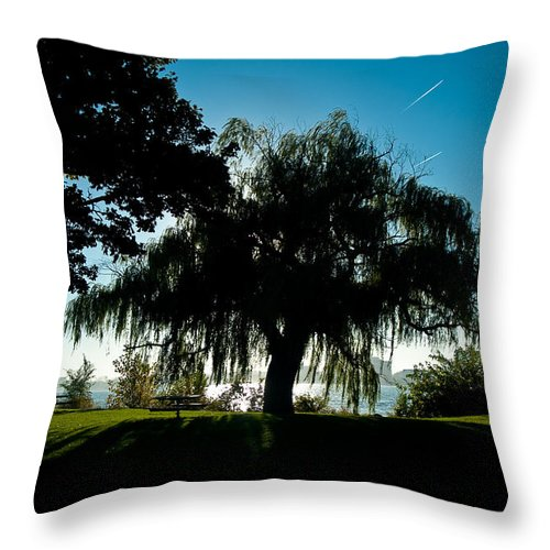 Willow Throw Pillow featuring the photograph Weeping Willow Silhouette by Steven Dunn