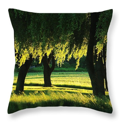 Willow Throw Pillow featuring the photograph Weeping Willows by Steve Somerville