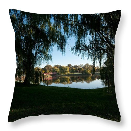 Weeping Throw Pillow featuring the photograph Weeping Willows by Steven Dunn