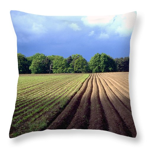 Wendland Throw Pillow featuring the photograph Wendland by Flavia Westerwelle