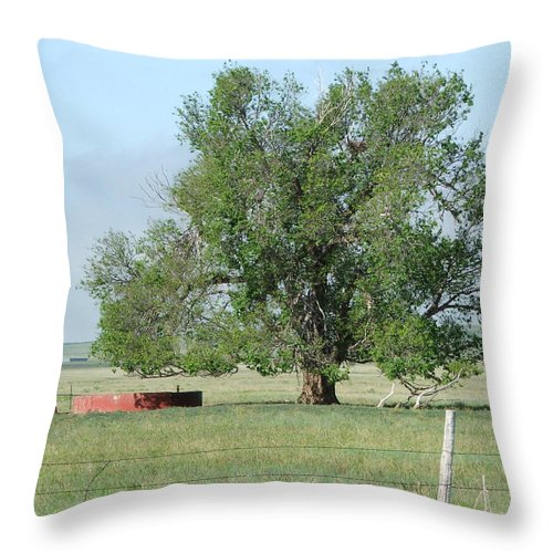 Texas Throw Pillow featuring the photograph West Texas Windmill by Bob W Brown