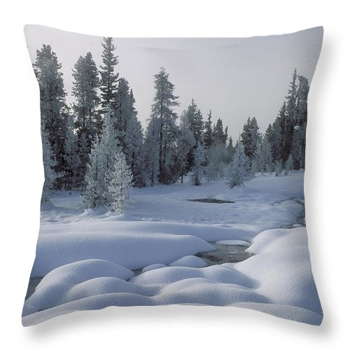 Yellowstone Throw Pillow featuring the photograph West Thumb Snow Pillows by Sandra Bronstein