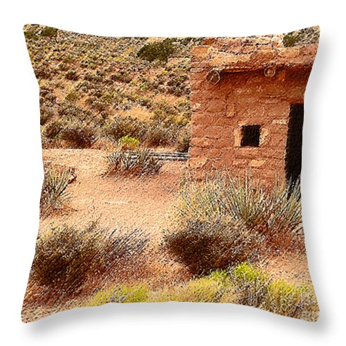 Homes Throw Pillow featuring the photograph Western Homesteads by Angela L Walker