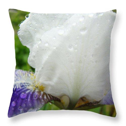 Iris Throw Pillow featuring the photograph Wet Flower Raindrops Art Iris Flower Spring Baslee Troutman by Baslee Troutman