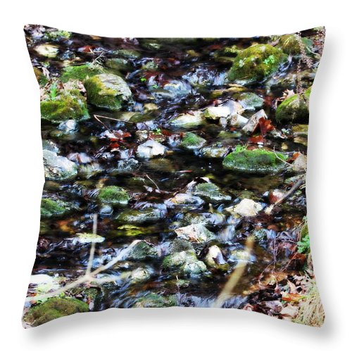 Water Throw Pillow featuring the photograph Wet Rocks by Emily Spivy