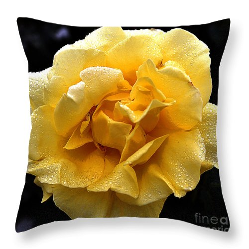 Clay Throw Pillow featuring the photograph Wet Yellow Rose II by Clayton Bruster