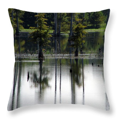 Wetlands Throw Pillow featuring the photograph Wetland by Amanda Barcon