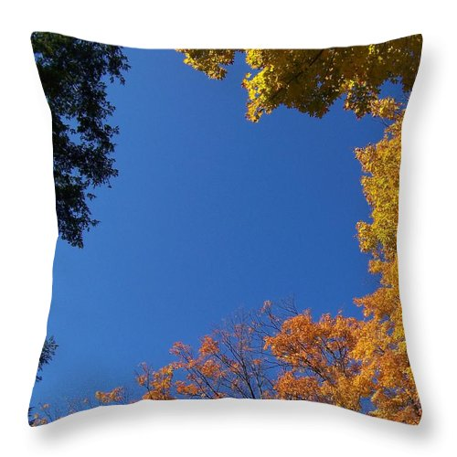 Trees Throw Pillow featuring the photograph What A Day - Photograph by Jackie Mueller-Jones