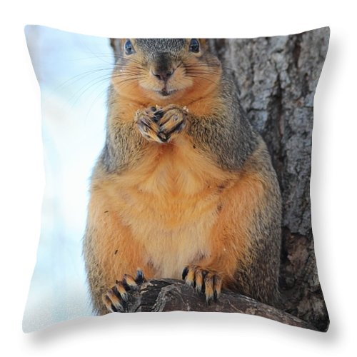 Squirrel Throw Pillow featuring the photograph What Do You Want by Lori Tordsen